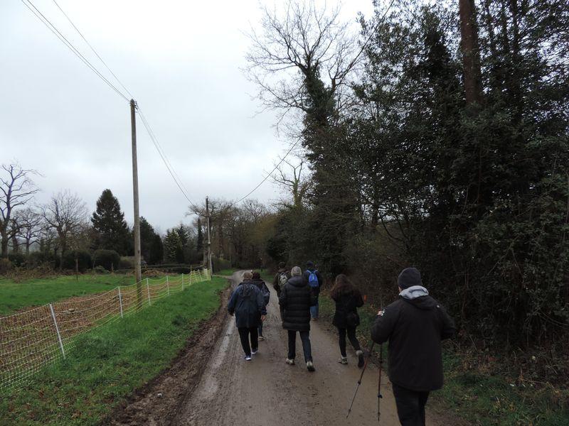 les participants marchent sur un chemin de terre.